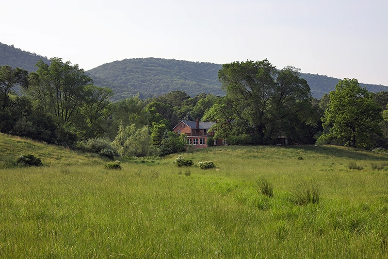 Valley View of Commons