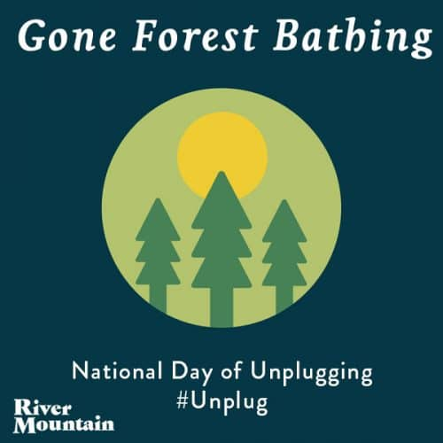National Day of Unplugging Forest Bathing