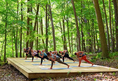 yoga-retreat-near-me