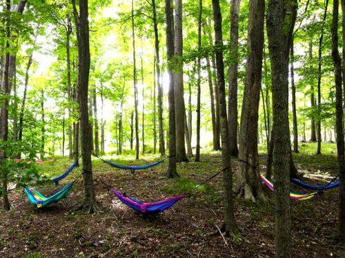 hammock-hideaway