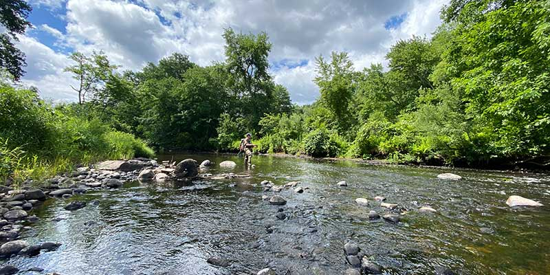 fly fishing near DC pennsylvania