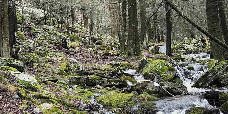 Hike Pennsylvania Mid-State Trail lodging and shuttle